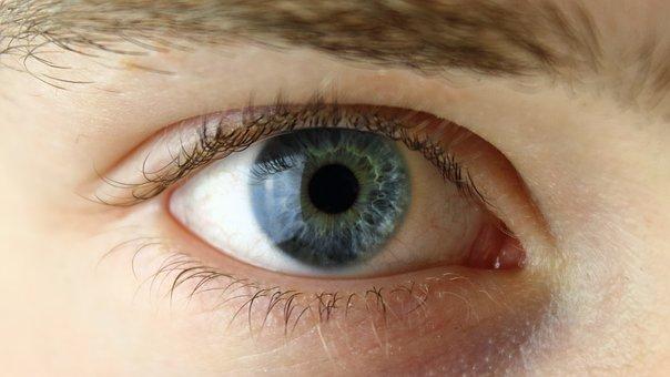 eye-2154384__340